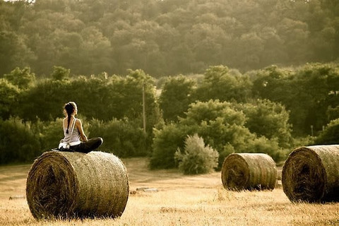 """""""You should sit in meditation for 20 minutes a day, unless you're too busy; then you should sit for an hour."""" Old Zen saying"""
