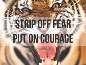 courage-fear-quote-tiger-Favim.com-1428678